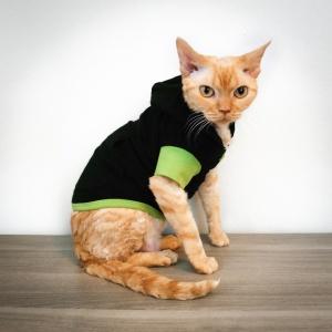 Thorn cat